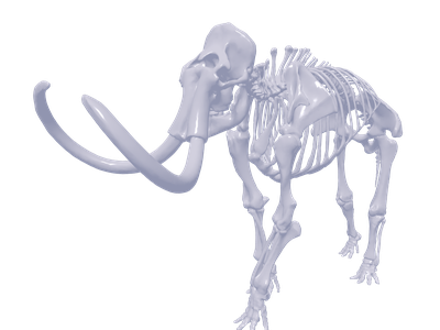 Elephant 3d Models For Free Download Free 3d Clara Io