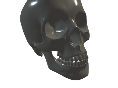 Skeleton 3D Models for Free - Download Free 3D · Clara io